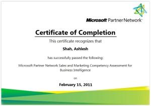 Microsoft Certified Sales & Marketing Professional for Microsoft BI